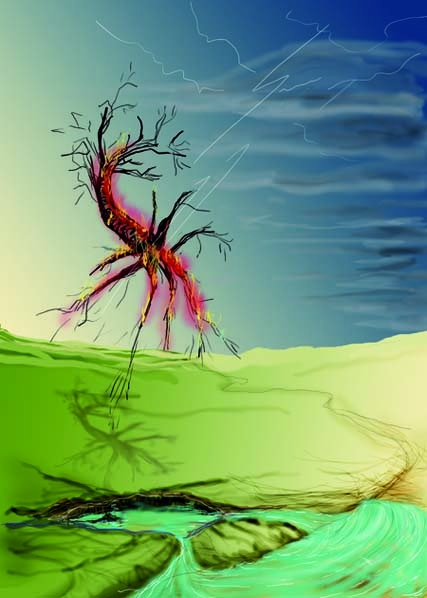 h 62 boom uitde grond gerukt web-S